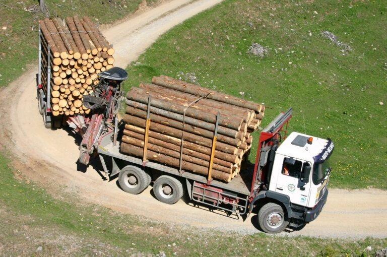 rundholztransport