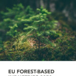 cepi climate effects of the forest based sector in the eu exc summary 1